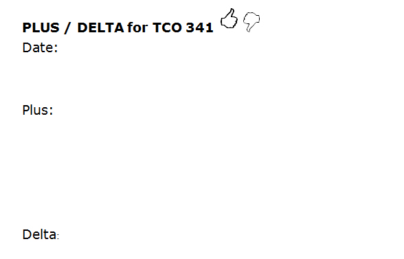 The Plus Delta feedback form