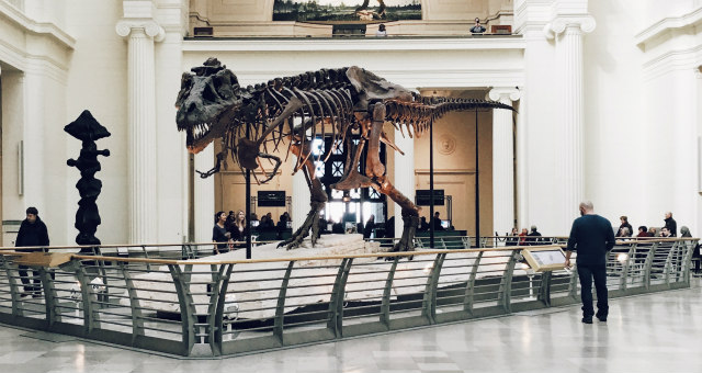Museum exhibit reflects flipped teaching methods