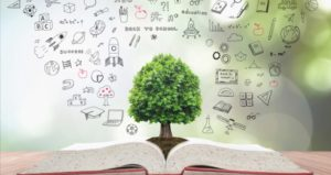 Tree coming from book with educational thoughts represents teaching philosophy