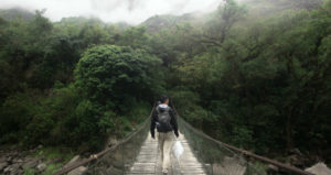 Person with backpack walks on bridge with forest in background