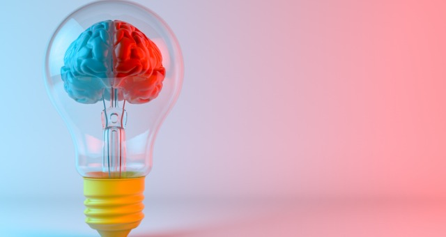 Light bulb with a brain inside showing two sides, a red side and a blue side